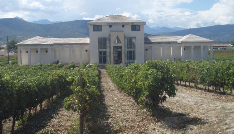 Αφιέρωμα: η ελληνική αμπελουργία & αγορά οίνου
